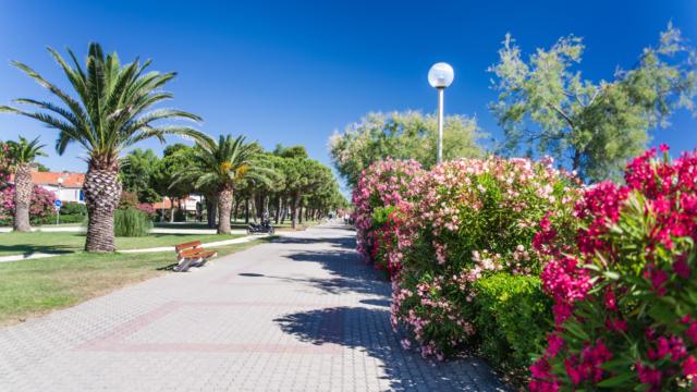 Promenade Front De Mer L.lacombe