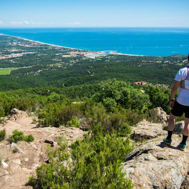 Trail Massane Argeles S.ferrer