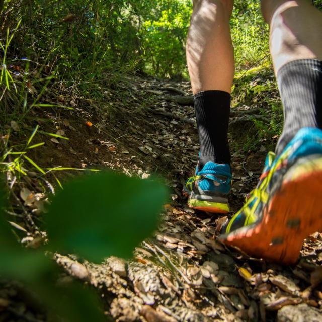 Trail Valmy Argeles S.ferrer (15)