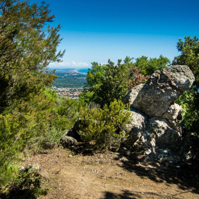 Trail Valmy Argeles S.ferrer (19)