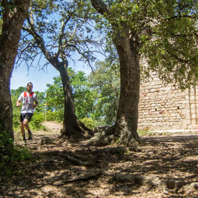Trail Valmy Argeles S.ferrer (32)