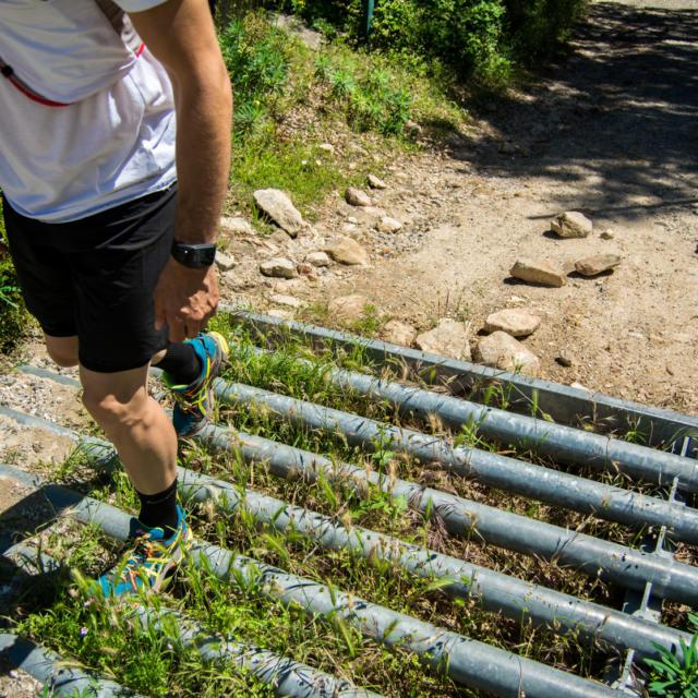 Trail Valmy Argeles S.ferrer (36)