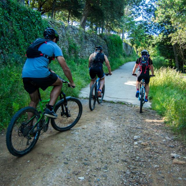 Trail Valmy Argeles S.ferrer (5)