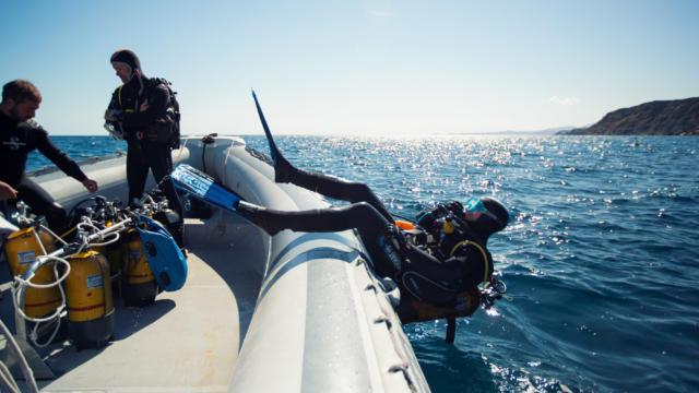 Plongee Argeles Sur Mergarnements (36)